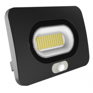 Flood Light 30W with PIR