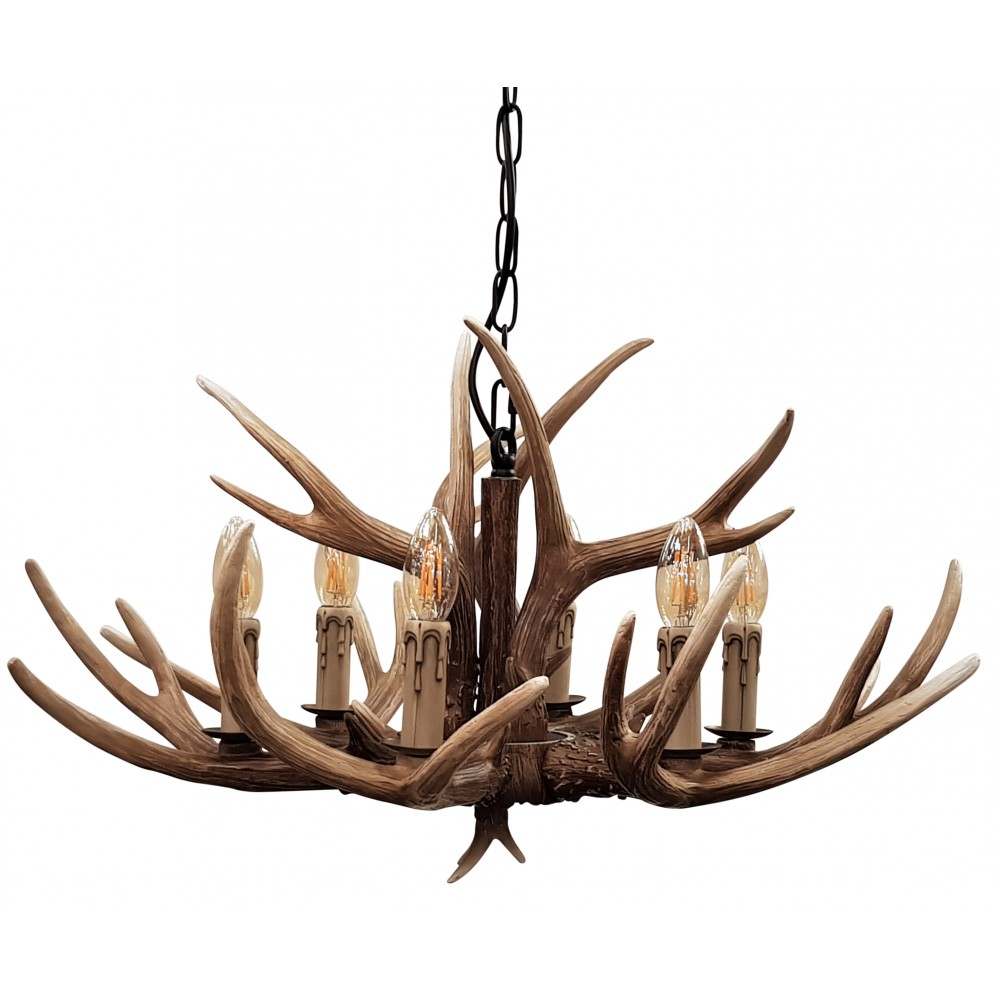Stag 6 Light -  Brown